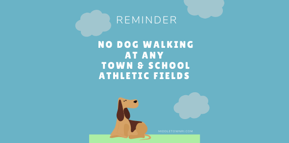 No Dog Walking Reminder